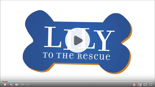 Cameron-Lily-to-the-Rescue-Video2
