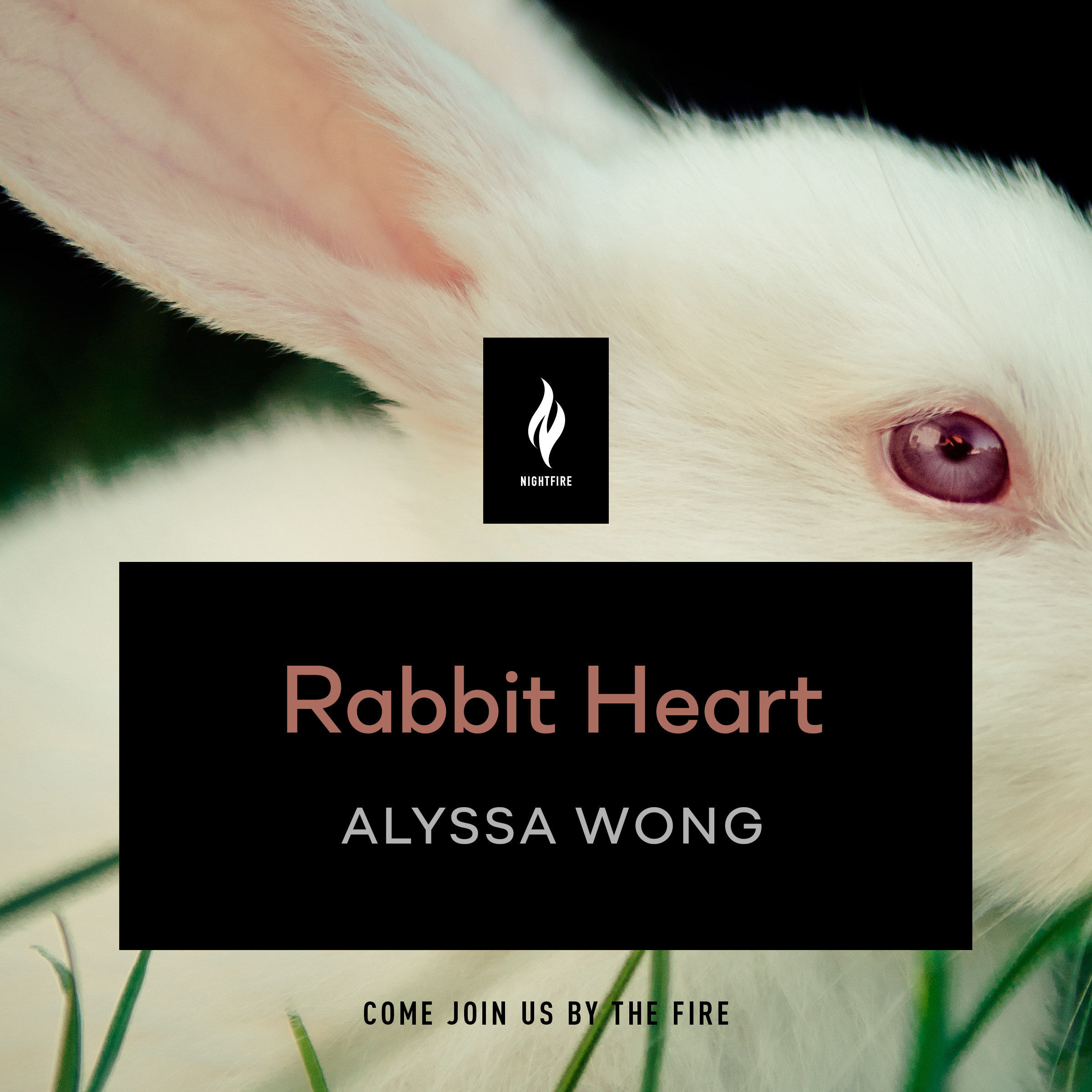 RabbitHeart_compD
