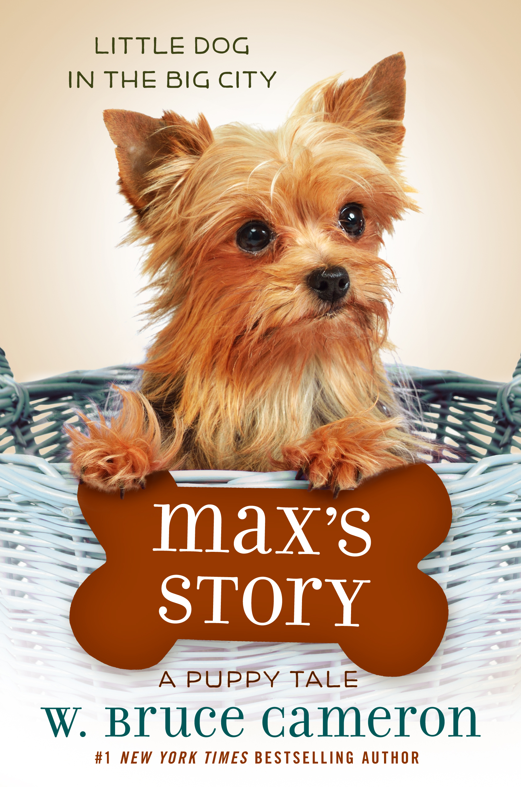 MaxsStory