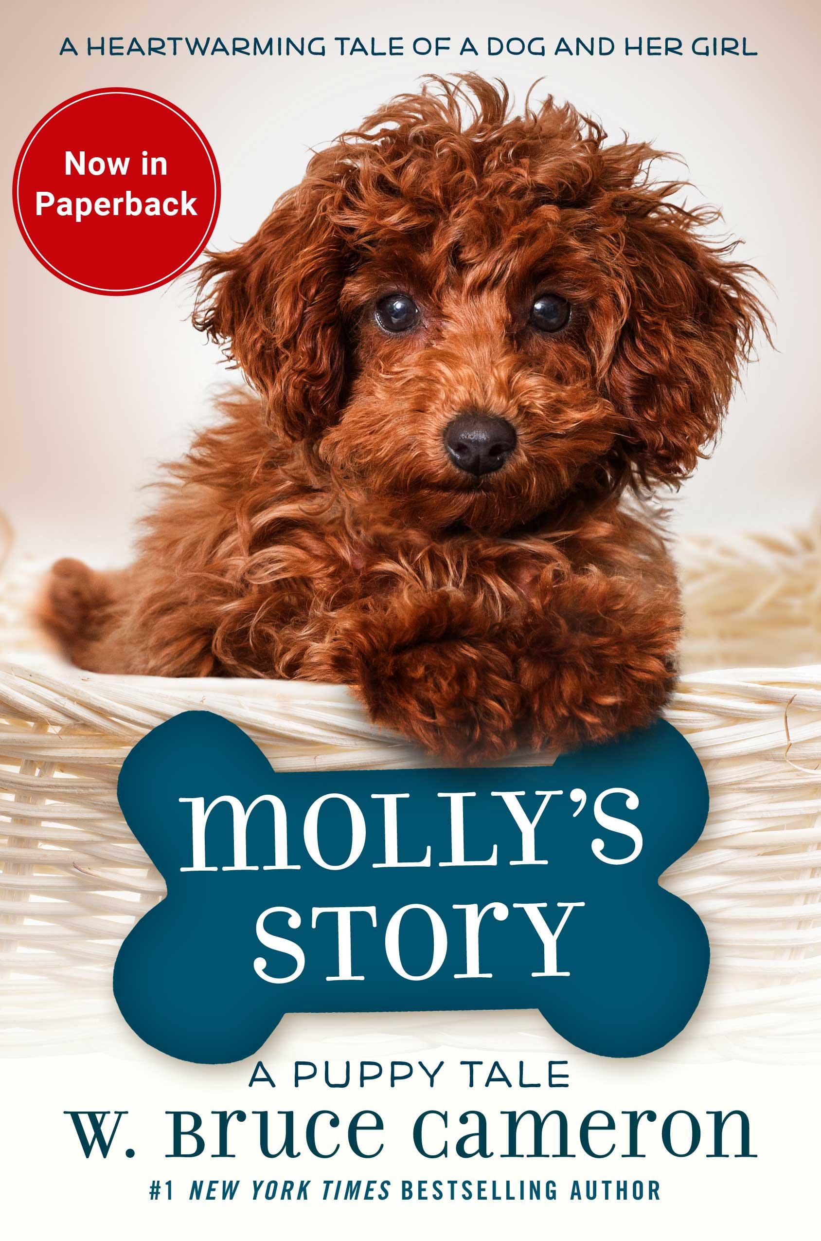 MollysStory_paperback