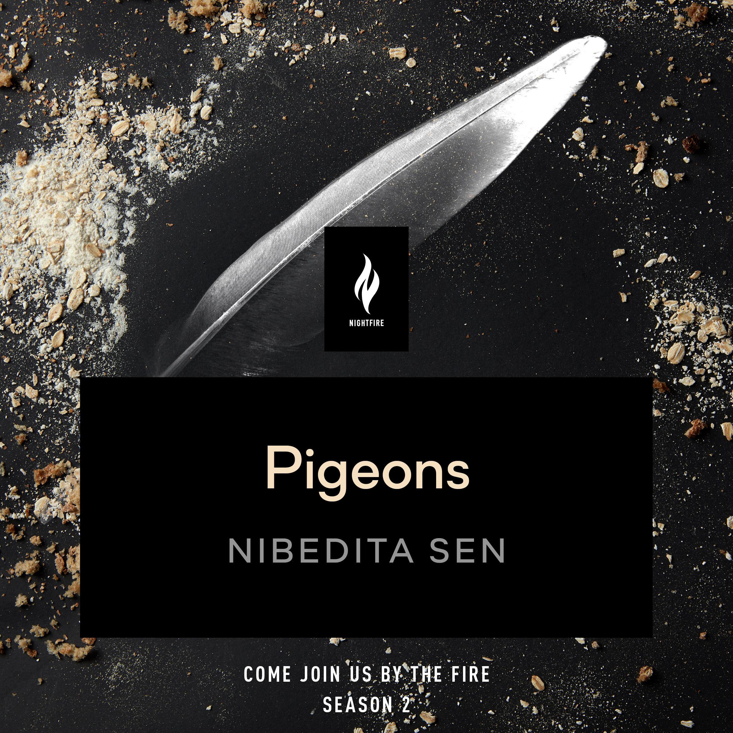 Pigeons_Sen
