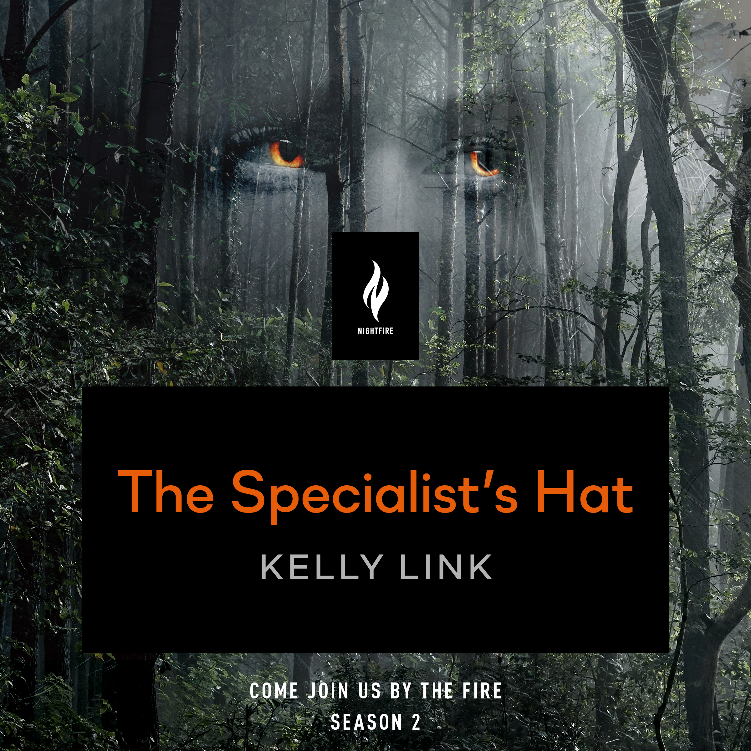 TheSpecialistsHat_Link
