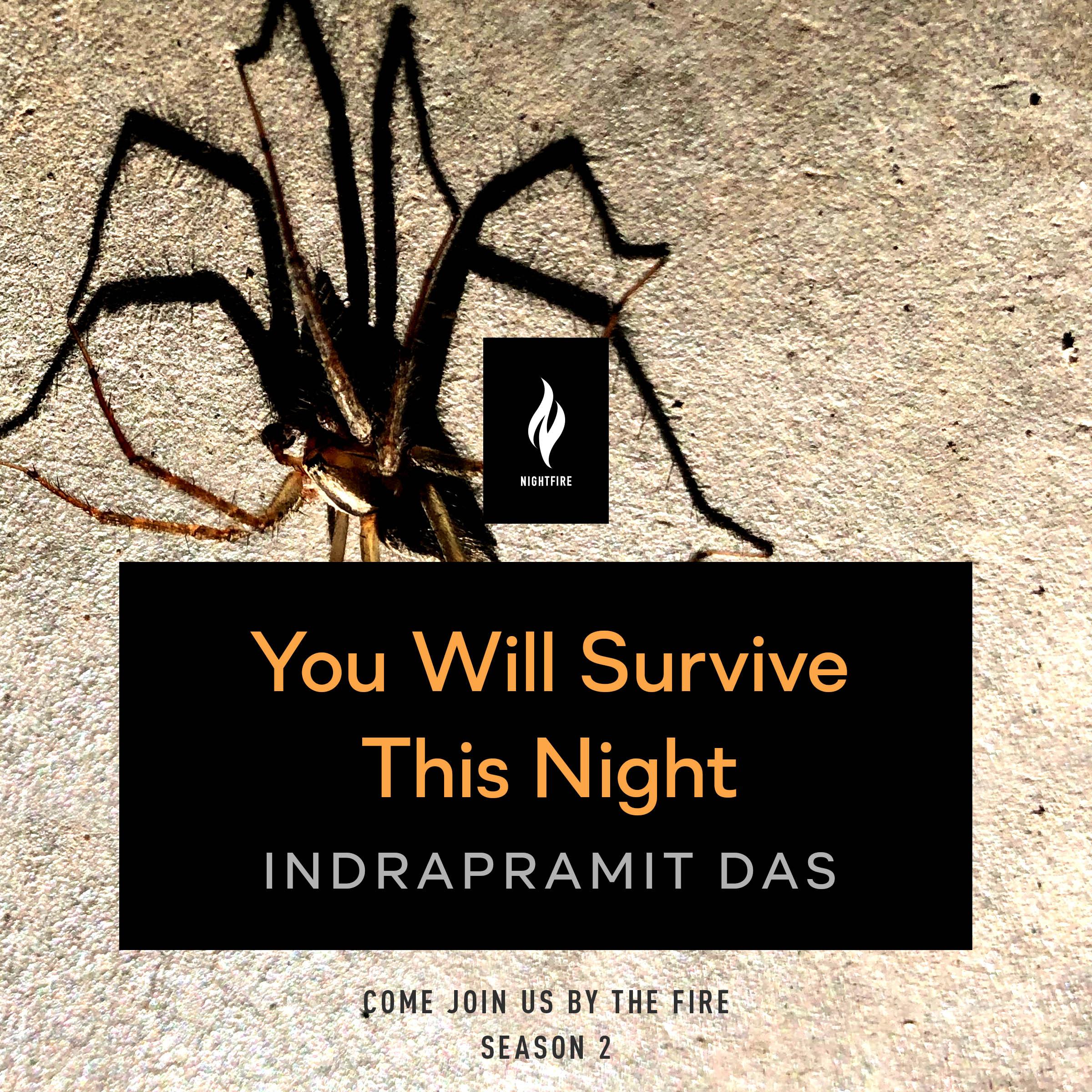 YouWillSurviveThisNight_Das